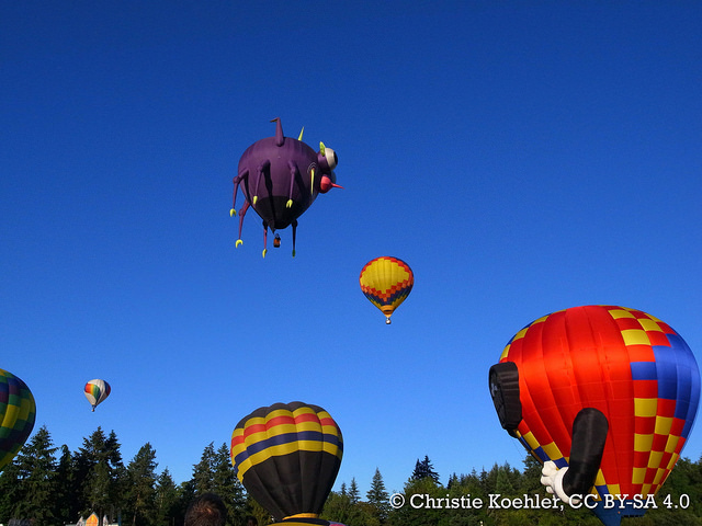 Hot air balloons launching at the Tigard Festival of Balloons!