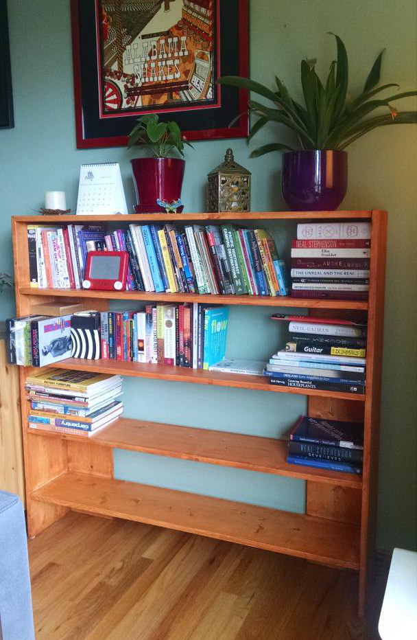 Bookcase I built from scratch.